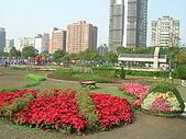 99.01.04 台北花卉展:DSCN0255.JPG