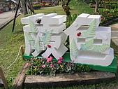 99.01.04 台北花卉展:DSCN0312.JPG
