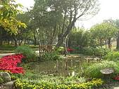 99.01.04 台北花卉展:DSCN0316.JPG