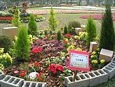 99.01.04 台北花卉展:DSCN0218.JPG