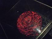 99.11.30 台北行之花博日美夜豔+流浪到淡水:紅玫瑰