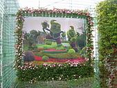 99.01.04 台北花卉展:DSCN0377.JPG