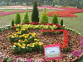 99.01.04 台北花卉展:DSCN0219.JPG