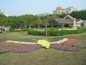 99.01.04 台北花卉展:DSCN0220.JPG