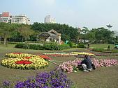 99.01.04 台北花卉展:DSCN0222.JPG