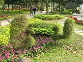 99.01.04 台北花卉展:DSCN0330.JPG