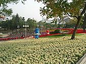 99.01.04 台北花卉展:DSCN0334.JPG