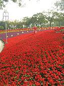 99.01.04 台北花卉展:DSCN0335.jpg