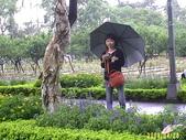 200804台北一遊:1059563262.jpg