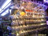 香港2007耶誕:1401484142.jpg