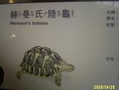 200804台北一遊:1059563256.jpg