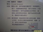 200804台北一遊:1059563257.jpg