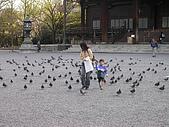 2004日本賞櫻行:DSCN2726
