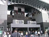 2004日本賞櫻行:DSCN2735
