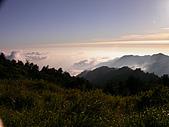 來去觀霧:DSCN2895