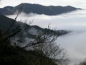 來去觀霧:DSCN2309