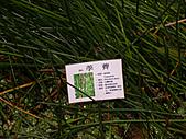 2005.12.11-綠世界一日遊:DSCN3589