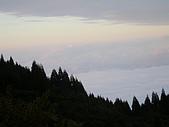 來去觀霧:DSCN2359