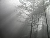 來去觀霧:DSCN2401