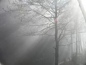 來去觀霧:DSCN2403