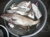 馬祖船老大民宿/釣場漁獲照片:1755197011.jpg