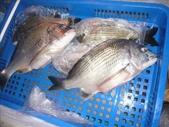 馬祖船老大民宿/12月鱸魚來了:1628200811.jpg