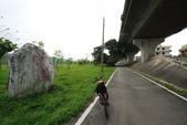 單車不孤單:160330 河濱公園-007.JPG