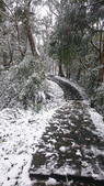 2016 旅遊:160124 大山背賞雪-084.JPG