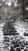 2016 旅遊:160124 大山背賞雪-099.JPG