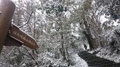 2016 旅遊:160124 大山背賞雪-040.JPG