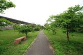 單車不孤單:160330 河濱公園-023.JPG