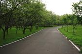 單車不孤單:160330 河濱公園-005.JPG