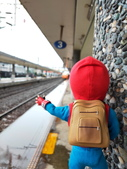 2020 旅遊:201121 小蜘蛛的鐵道之旅-018.JPG