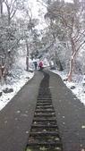 2016 旅遊:160124 大山背賞雪-047.JPG