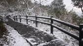 2016 旅遊:160124 大山背賞雪-102.JPG