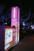 元宵燈會:130226 台灣燈會-005.JPG