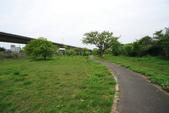 單車不孤單:160330 河濱公園-022.JPG