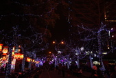 元宵燈會:130310 台灣燈會-059.JPG