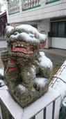 2016 旅遊:160124 大山背賞雪-012.JPG
