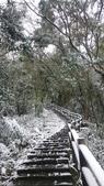 2016 旅遊:160124 大山背賞雪-095.JPG