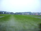 2008鼠於濃春─生祥&大竹研:DSC00406.jpg