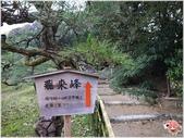 2014四國-栗林公園:R0011393.JPG