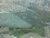 2009出發去東京DAY5:那一大片是墓園吧