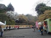 【2013東京賞花】 Day2:旁邊是盆栽展