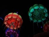 2009出發去東京DAY3:這是水母