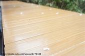 【2013東京賞花】 Day2:椅子上也是櫻花花瓣~