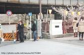 【2013東京賞花】 Day2:路邊遇到街頭藝人
