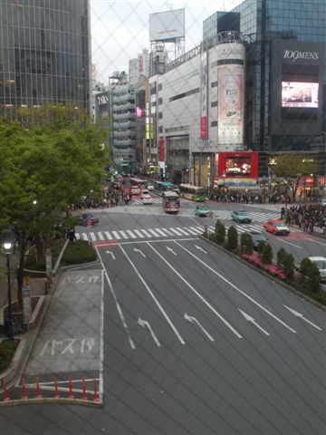 【2013東京賞花】 Day3:tokyo day3 (259).JPG