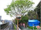 2014四國-栗林公園:R0011255.JPG
