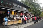 【2013東京賞花】 Day2:大媽們都去買熱熱的甜酒喝